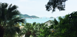 Hong Kong Ultimate Guide All You Need to Know for Your Trip to Fragrant Harbour Repulse Bay