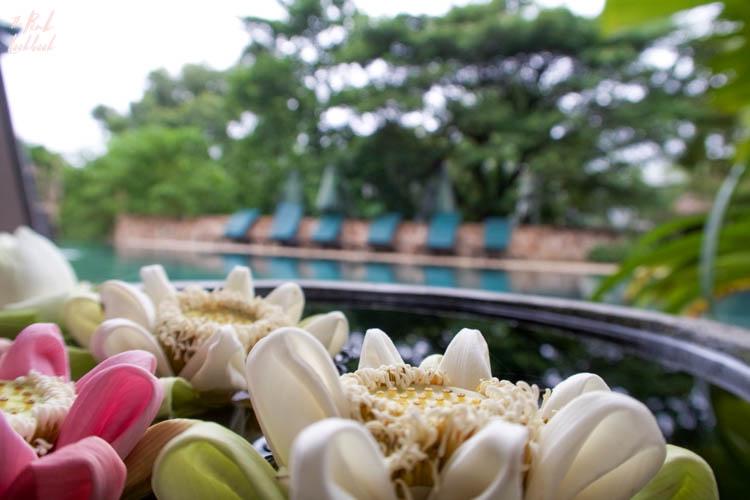 Review Hillocks Hotel Pool Lotus