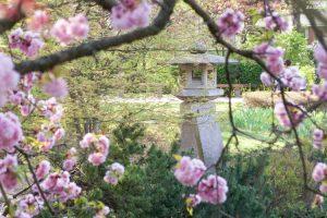 Setagaya Park Sculpture