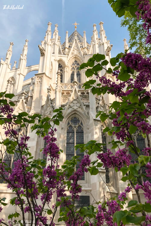 Vienna Spring Votive Church Lilacs