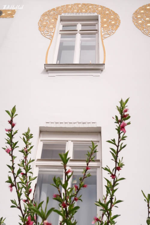 Brunn Jugendstil Window Tree