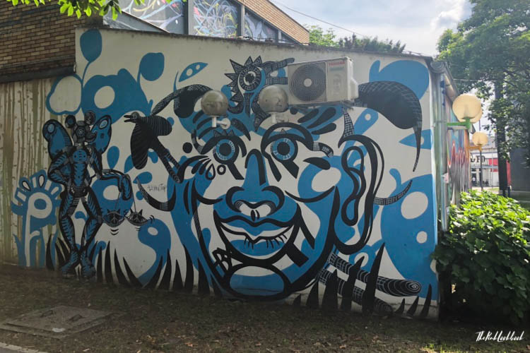 Street Art Zagreb Blue Face
