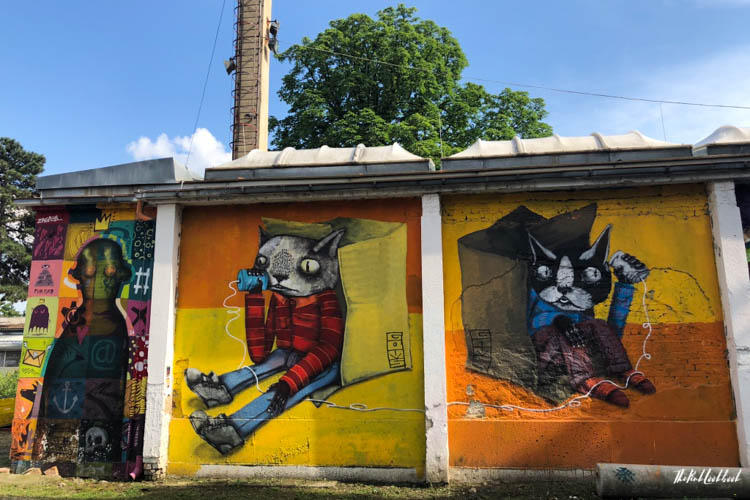 Street Art Zagreb Cats