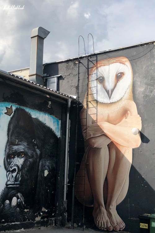 Street Art Zagreb Owl