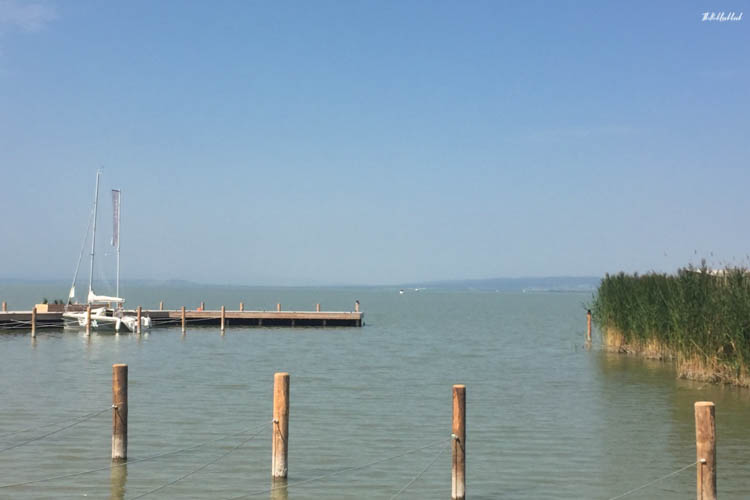 Neusiedler See View