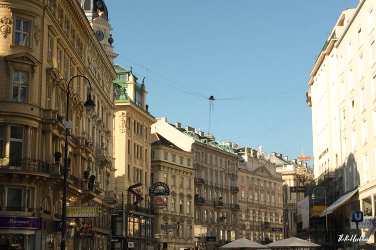 Things to Do in Vienna in Autumn Graben View