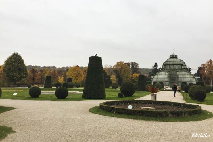 Things to Do in Vienna in Autumn Schoenbrunn Palmenhaus