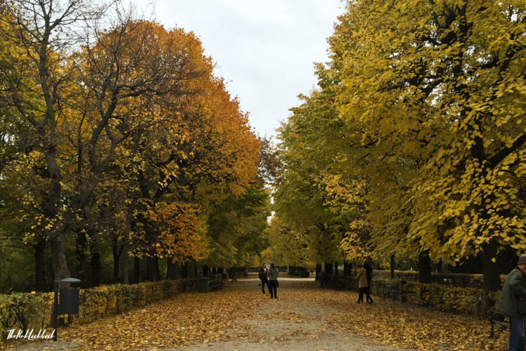 Things to Do in Vienna in Autumn Schoenbrunn