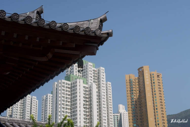 Hong Kong Ultimate Guide All You Need to Know for Your Trip to Fragrant Harbour Chi Lin Nunnery View Skyscrapers