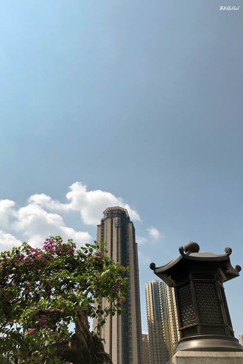 My Favourite Hong Kong Pictures Chi Lin Nunnery Old Meets New