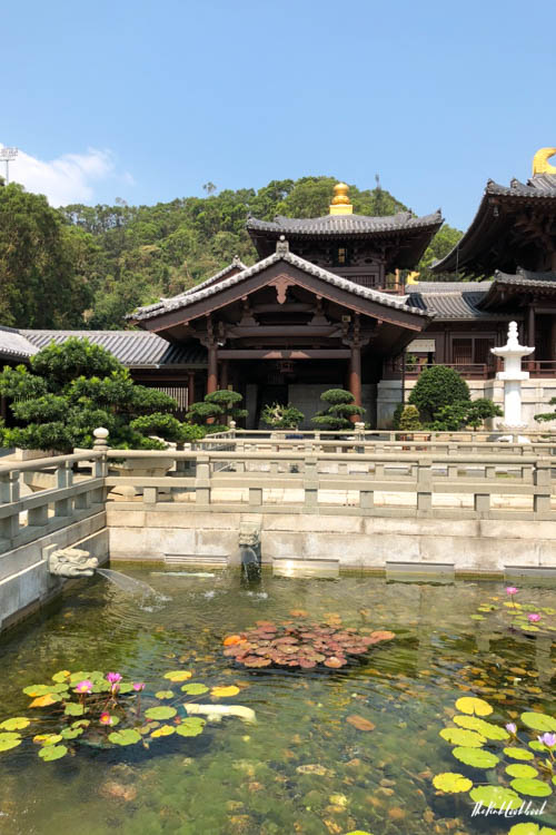 The Most Instagramable Places in Hong Kong and if They Are Worth Visiting Chi Lin Nunnery