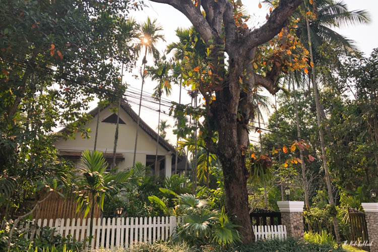 Luang Prabang Ultimate Guide House and Garden