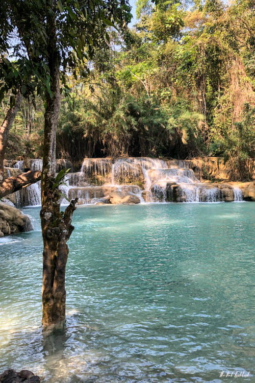 Luang Prabang Ultimate Guide Waterfall Pool