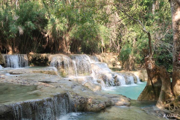 Luang Prabang Kuang Si Waterfall Bear Reserve Pools