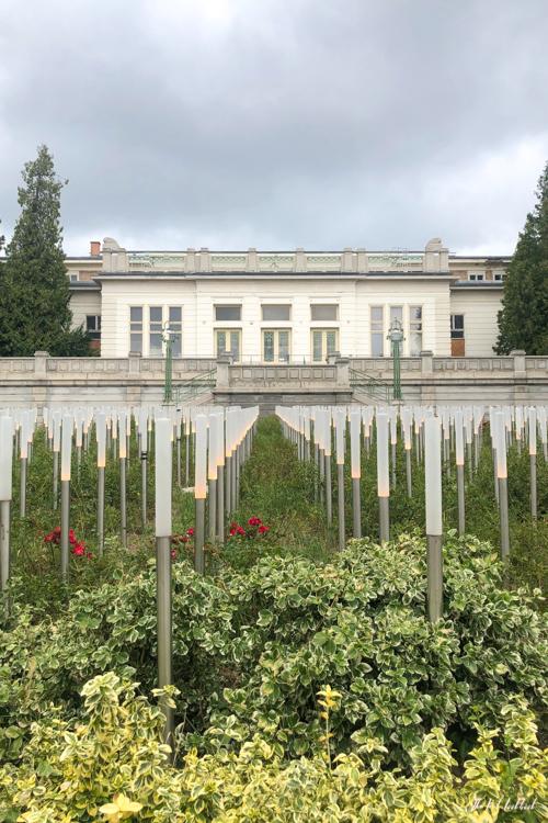 Vienna Off the Beaten Paths Fin de Siecle Art in Steinhof Memorial