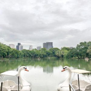 Bangkok Off the Beaten Paths - Meet the Lizards in Lumpini Park Lake with Swan Boats