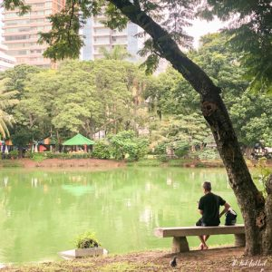 Bangkok Off the Beaten Paths - Meet the Lizards in Lumpini Park Reading by the Lake