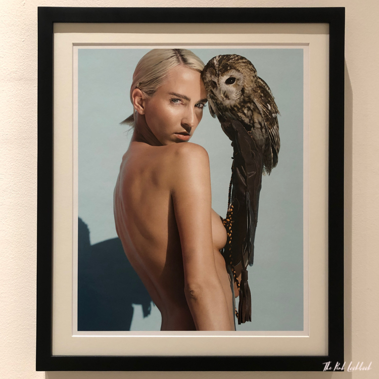 Sylvie Blum Naked Beauty at the MOCA BANGKOK Exhibition Review Owl